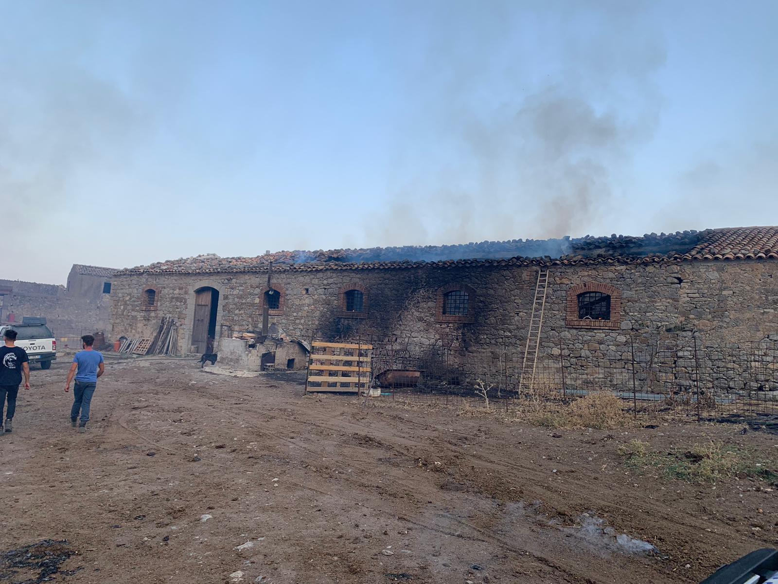 Avviso Pubblico erogazione contributi alle aziende allevamento zootecnico danneggiate dagli incendi.